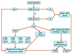 relación libre total de antígeno prostático